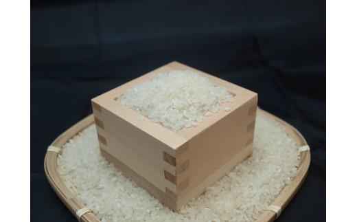 017-09秦野の米(はるみ)10kg