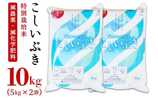 75-KS101新潟県長岡産特別栽培米こしいぶき10kg(5kg×2袋)