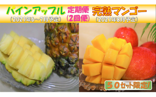 【定期便】パインアップルお任せ1(2~4個)&完熟マンゴー(約2㎏)