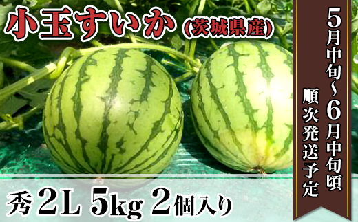 12-6茨城県産小玉すいか【秀2L】5kg(2個)