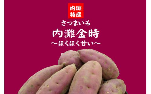 【A-49】内灘金時〜ほくほく甘いさつまいも〜 (内容量7㎏)