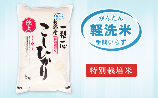 【軽洗米】新潟県長岡市産コシヒカリ5kg