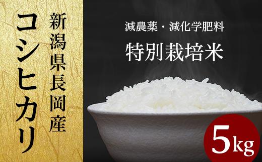 新潟県長岡産コシヒカリ(特別栽培米)5kg