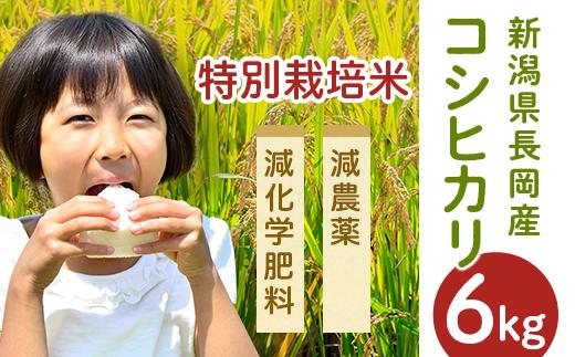 新潟県長岡産コシヒカリ(特別栽培米)6kg