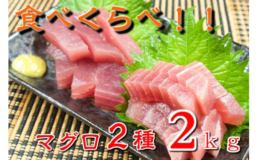 【期間限定!】マグロ2食べ比べセット 大容量2kg!!