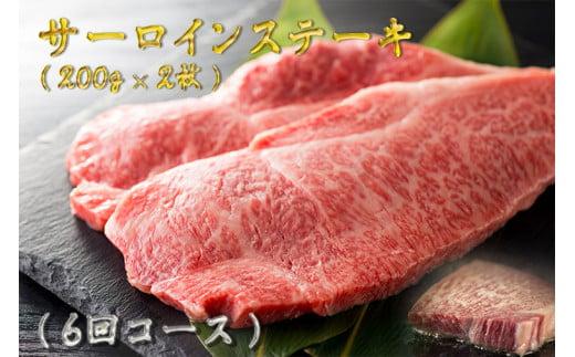 BG179 【訳あり】最高級佐賀牛サーロインステーキ年6回コース(200g×2)