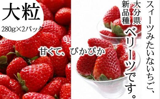 B3-06 【先行予約】新品種いちご「ベリーツ」大粒(280g×2パック)