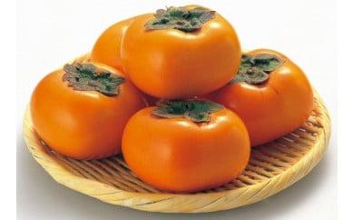 ☆先行予約☆和歌山県産 平核無柿<ご家庭用>約10kg【2021年10月上旬以降発送】