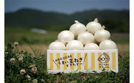 ◆配送5月下旬~\希少!ケンちゃんファームの特別栽培真っ白な白たまねぎ 3キロ~ひょうご安心ブランド認証取得~