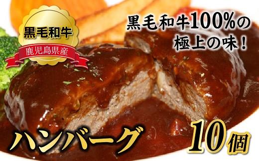 071-02 鹿児島県産黒毛和牛ハンバーグ10個