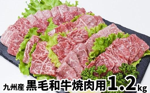 096-44 九州産黒毛和牛焼肉用1.2kg