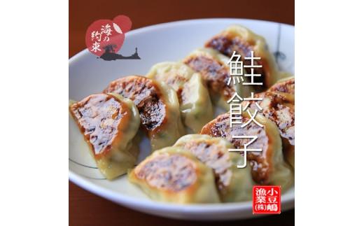 鮭餃子(10個×2)