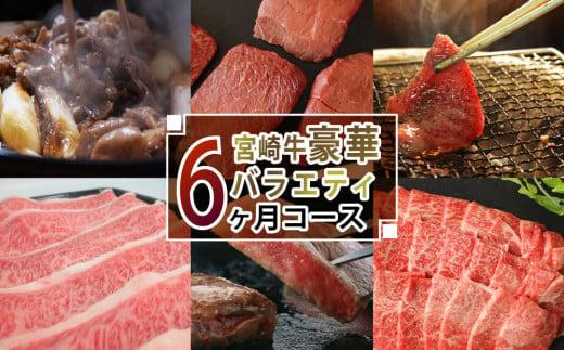 <宮崎牛>豪華バラエティ6ヶ月コース 合計4.6kg【F71】