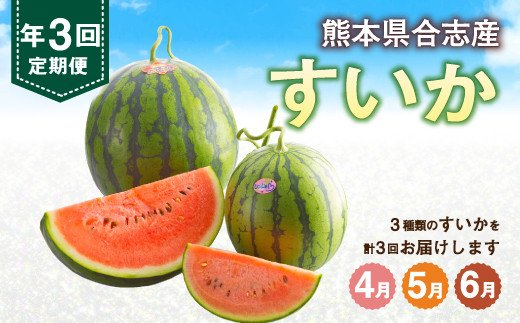 【定期便 年3回】熊本県合志産 すいか 合計5玉 西瓜 野菜 フルーツ