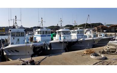 【大井漁協】中物乗合1人利用券/釣り船