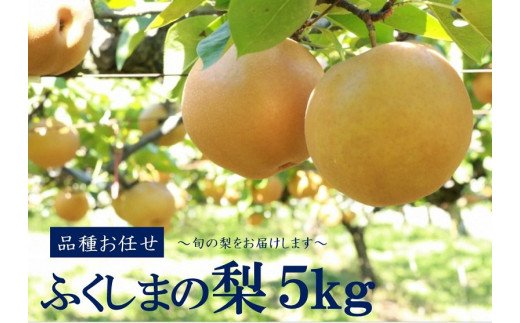 No.1069 【先行受付】ふくしまの梨 5kg 品種お任せ ナシ なし