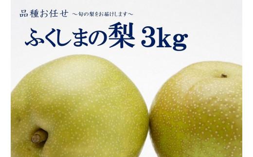 No.1068 【先行受付】ふくしまの梨 3kg 品種お任せ ナシ なし