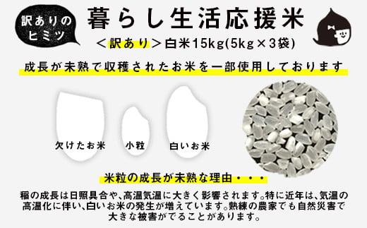 訳あり 緊急支援品 家計応援米 計 15kg(5kg×3袋)精米 白米