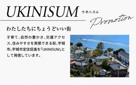 UKINISUM 長袖 Tシャツ(2色・4サイズ展開)宇城市の地場刺繍Style