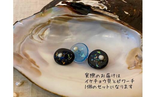 琵琶湖パール入りブローチ「BIWARCHI(ビワーチ)」ふるさと納税限定セット