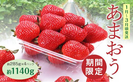 A1  あまおういちご【約285g×4パック】