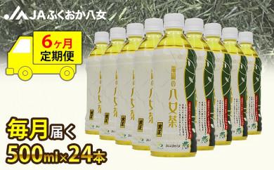 【6ヶ月連続お届け】福岡の八女茶 煎茶ペットボトル(500ml×24本)産地直送