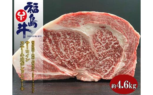 No.1074 福島県産 特選福島牛サーロインポンドステーキ 4.6Kg