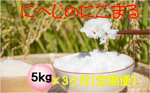 TN50【定期便】にへじのにこまる5kg×3か月