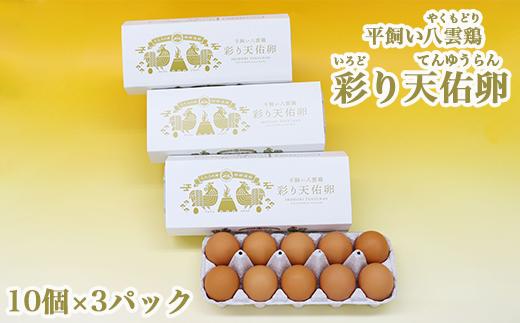 平飼い八雲鶏(やくもどり) 彩り天佑卵(てんゆうらん) 10個×3パック