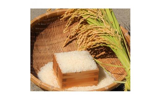 <2021年4月中旬より順次発送>お米食べ比べセット 精米10kg(5kg×2袋)【1135280】