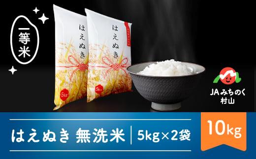 米 10kg 5kg×2 はえぬき 無洗米 令和2年産 2020年産 山形県村山市産