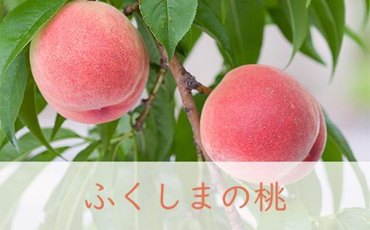 【先行予約】No.0480 川中島白桃3kg