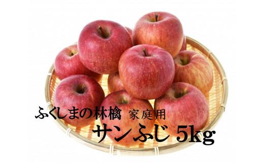No.1092 【家庭用】りんご サンふじ 5kg 林檎 リンゴ