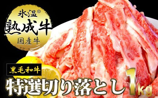 020C072 氷温(R)熟成牛 特選切落し1㎏【黒毛和牛】