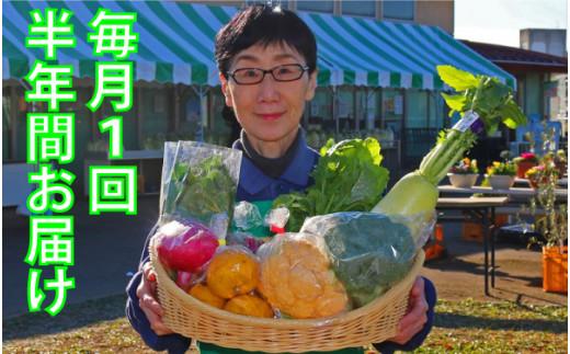 [№5672-0375]厳選・「おおばん市場」旬の野菜詰め合わせ 毎月1回半年間お届け定期便