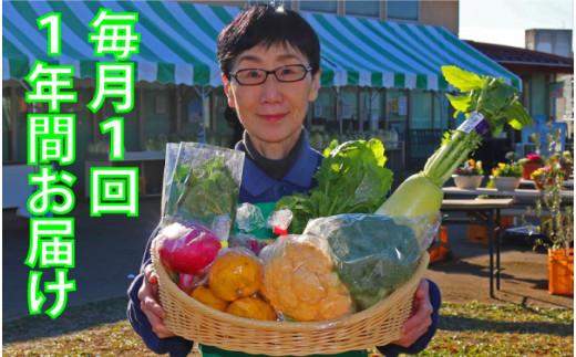 [№5672-0376]厳選・「おおばん市場」旬の野菜詰め合わせ 毎月1回1年間お届け定期便