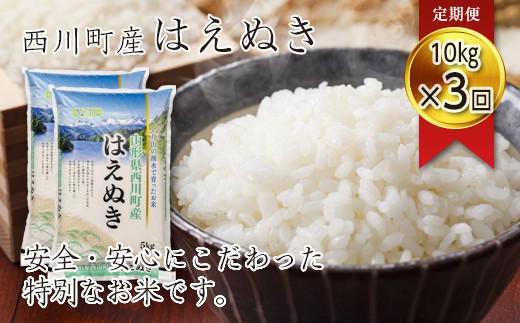 FYN9-267 【定期便3回】 令和2年産 山形県西川町産米 はえぬき10kg(5kg×2)