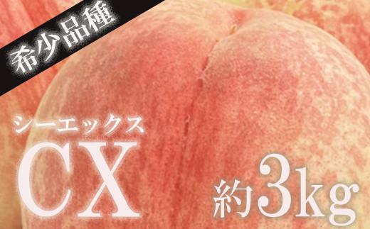 No.0635 もも 限定販売 希少品種「CX シーエックス」 3Kg