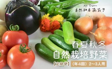 【定期便】春夏秋冬自然栽培野菜セット(年4回)2~3人用