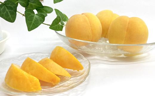 No.0270 先行予約/今、大人気 プチ贅沢な食切りセット  美味しい品種を厳選!『黄金桃 1.4kg』