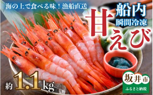 海の上で食べる味!「共栄丸」直送☆船内瞬間冷凍 甘えび 約1.1kg  [A-2301]