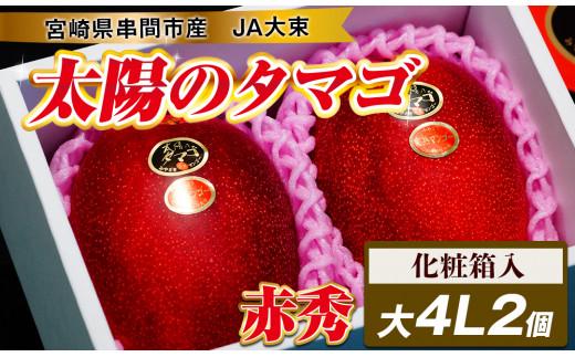 【先行予約・数量限定】宮崎県串間市産 完熟マンゴー【太陽のタマゴ】大(4L×2個)化粧箱入り