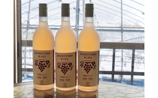1168 漆山果樹園の自家栽培ワイン 3本セット