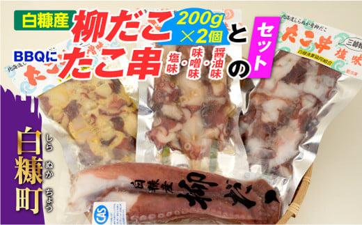 [№5723-0137]「しらぬか産柳だこ」とBBQに「たこ串(塩味・味噌味・醤油味)」のセット