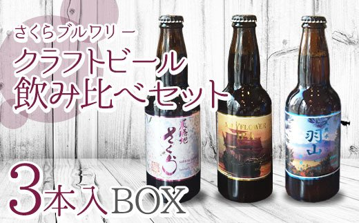 【間違いないチョイスで選ばれた】 クラフトビール 飲み比べセット 3本入BOX