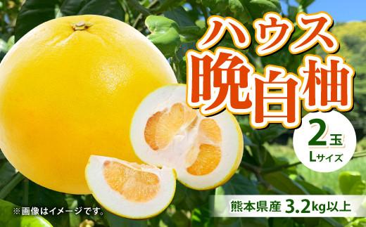 【事前予約】熊本県産 ハウス晩白柚 2玉 Lサイズ 3.2kg以上 果物