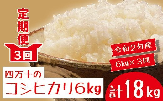 20-787.【令和2年産】【3回定期便】四万十市産「コシヒカリ」6kg×3回(計18kg)