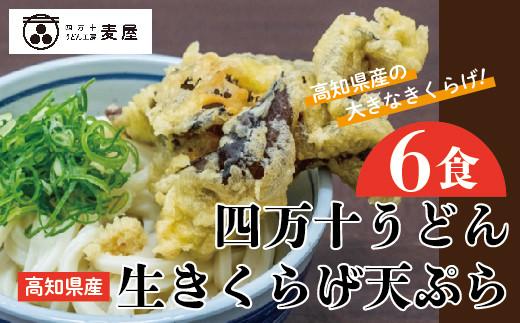 20-795.【数量限定】四万十うどんと生きくらげの天ぷら6食セット