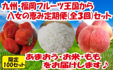 九州・福岡からお届け!八女の恵み定期便【全3回】 C