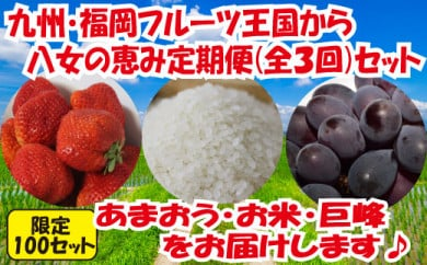九州・福岡からお届け!八女の恵み定期便【全3回】 D